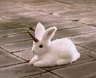 Unicorn Bunny
